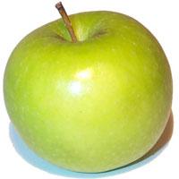 Збір фруктів