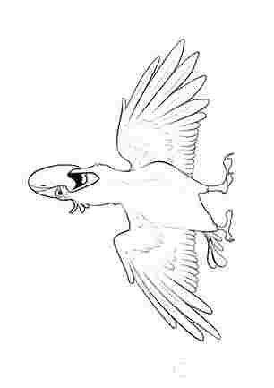 Попугай із Ріо